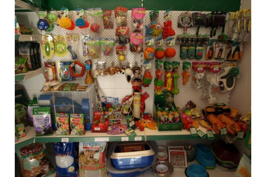 Zarra Pet Shop Bucuresti - 6/8