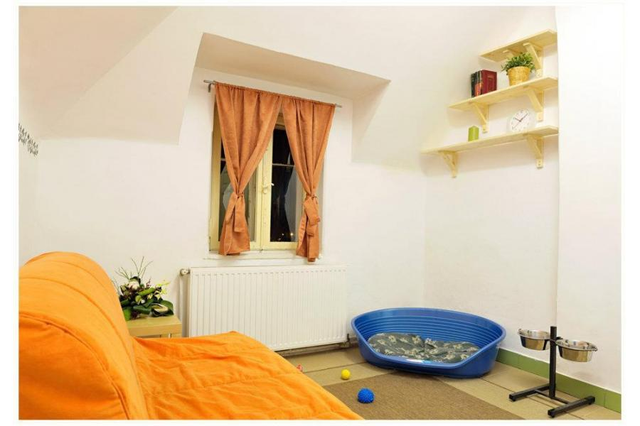 Ringstar Pet Hotel Bucuresti - 10/20