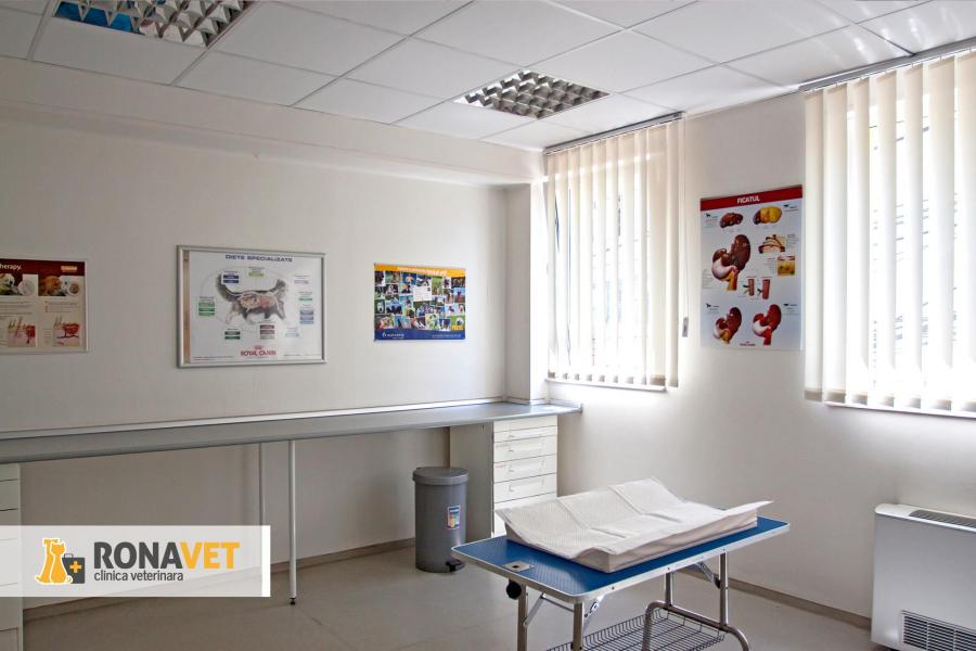 RonaVet Clinica Veterinara Bucuresti - 3/11