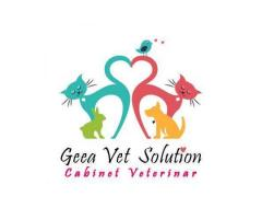 Geea Vet Solution Ploiesti